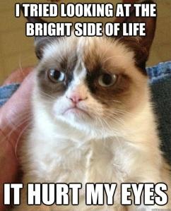 bright side grumpy cat