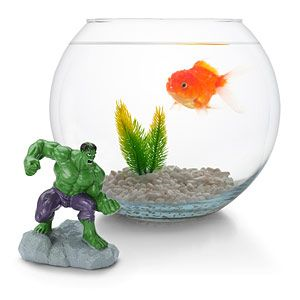 Hulk smash the fish!