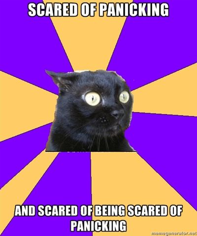 anxiety cat 4