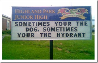dog-and-hydrant