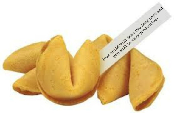 fortune cookie1