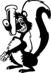 """Honey Badgers actually have a """"stink sack"""", much like skunks!"""