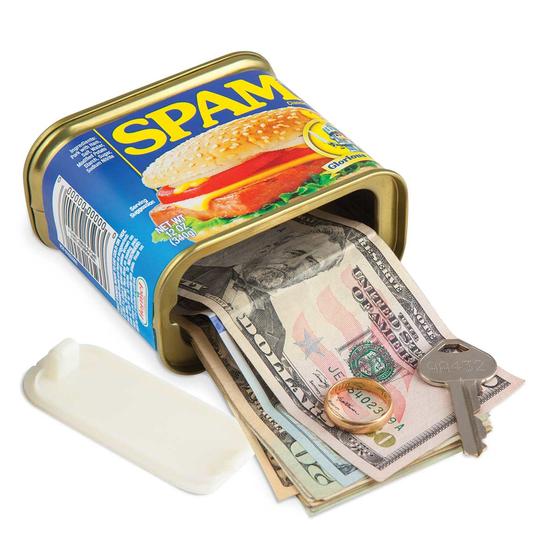 Spam decoy safe