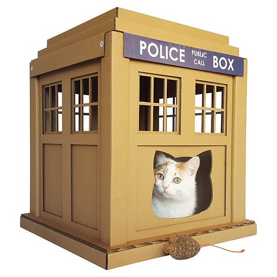 cardboard cat box